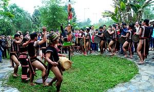 Праздник народности Седанг, посвященный собранному урожаю