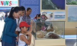Exhibition promotes Quang Nam province's sea tourism, culture