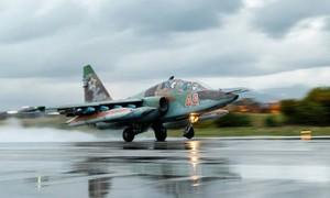 Эффективность сотрудничества России и США в урегулировании сирийского конфликта
