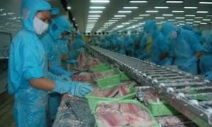 Sector acuícola de Vietnam aprovecha oportunidades para crecer en 2019