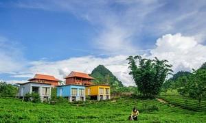 Du lịch homestay: Điểm đến hấp dẫn tại Mộc Châu