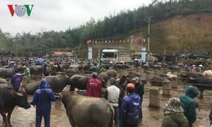 ตลาดนัดสัตว์เลี้ยงที่ใหญ่ที่สุดของเขตเขาภาคเหนือเวียดนาม