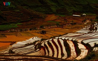 Mu Cang Chai named among world's 50 most beautiful places to visit