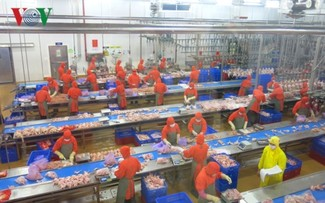 Vietnam's economic growth signals positive in 2019