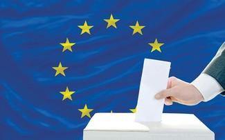Выборы в Европарламент: существующие вызовы