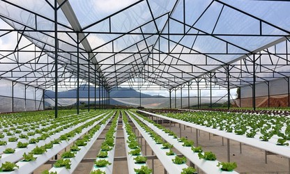 APEC increases investment in agriculture, rural areas