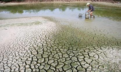 Climat: le Vietnam œuvre avec la communauté internationale