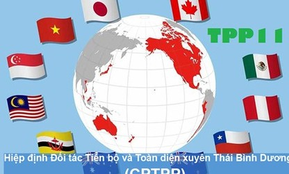 Вьетнам ждут большие возможности, предоставляемые ВПСТТП