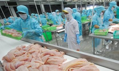 越南努力建设可持续发展的渔业