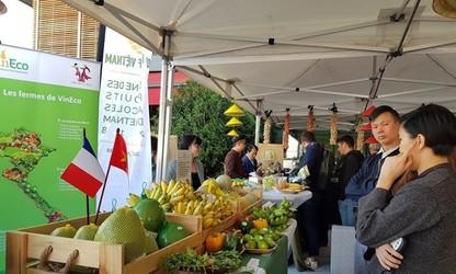 L'exportation des fruits vietnamiens en France.