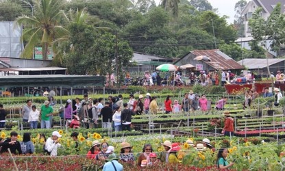 Các làng hoa vào vụ Tết