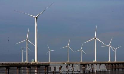 박 리에우에서의 풍력 발전 개발 및 베트남의 풍력 발전 잠재력