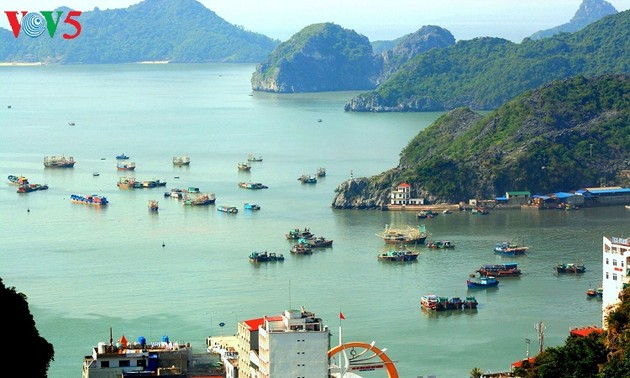 Visitors to Cat Ba hit two millionth mark in 2017