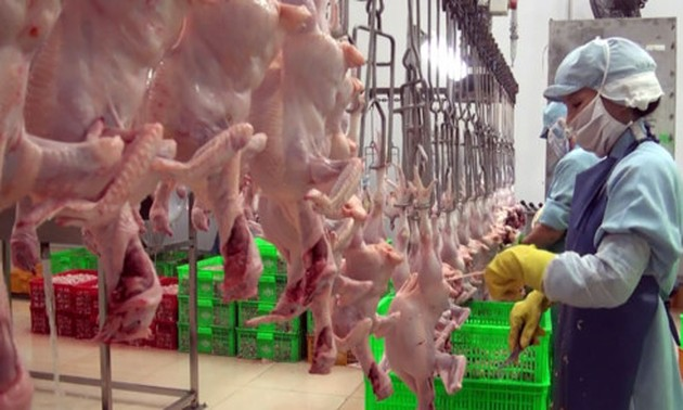 Vietnam exports processed chicken to Japan