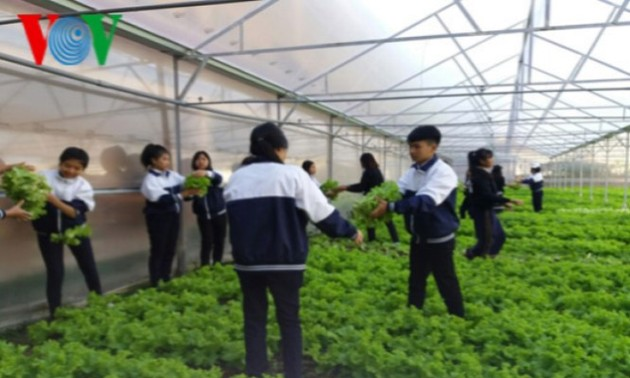 Lam Dong students practice high-tech agriculture