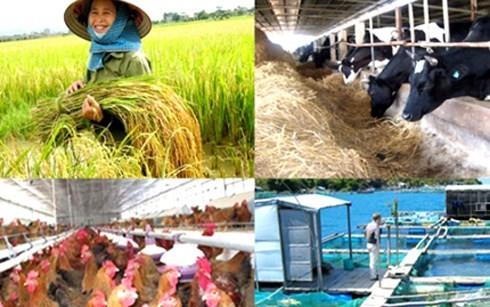 表彰100家服务农民的企业