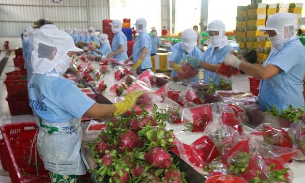 加强对接——越南农产品出口增长的钥匙