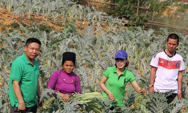 R&D director helps Sa Pa farmers escape poverty through medicinal plants