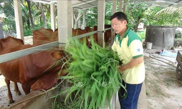 Poor man becomes role model of agricultural production