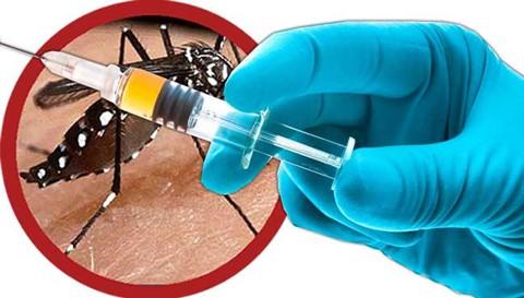 Phòng và điều trị sốt xuất huyết