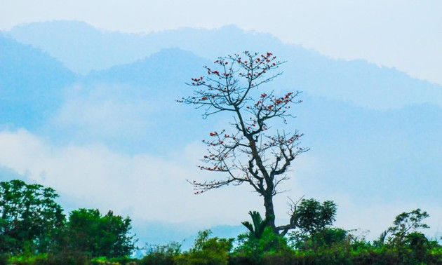 Truong Son Dong mountain range – ideal place for cloud hunters