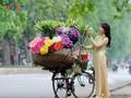 Sắc hoa Hà Nội