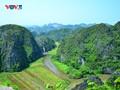 Des actions françaises pour le Vietnam plus vert
