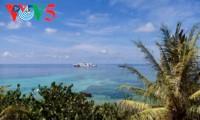 Nam Yet, île aux cocotiers