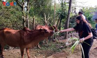 Experience country life at Moon Garden Homestay