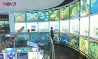 Bảo tàng Quảng Ninh, điểm đến hấp dẫn du khách