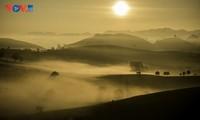 Bình minh sương, cõi mộng trên thảo nguyên Mộc Châu