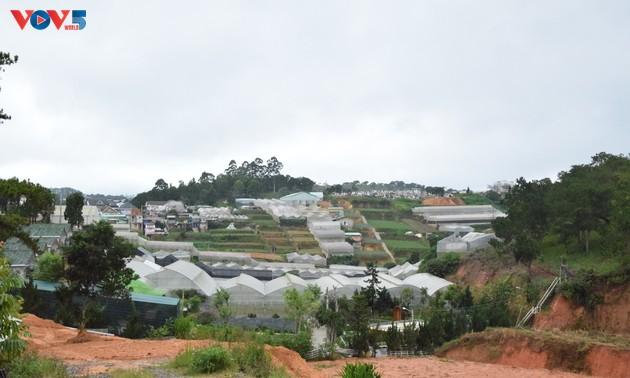Zoom sur Dà Lat, capitale agricole du Vietnam