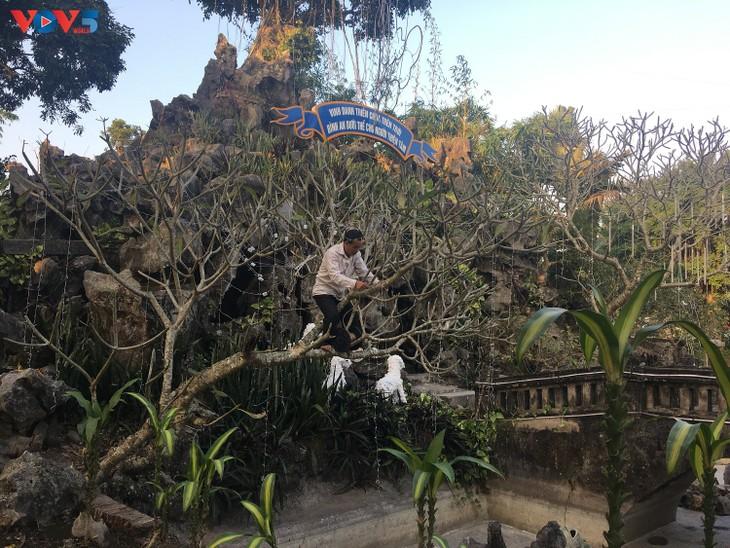 Không khí Giáng sinh tràn ngập tại nhà thờ đá Phát Diệm - ảnh 10