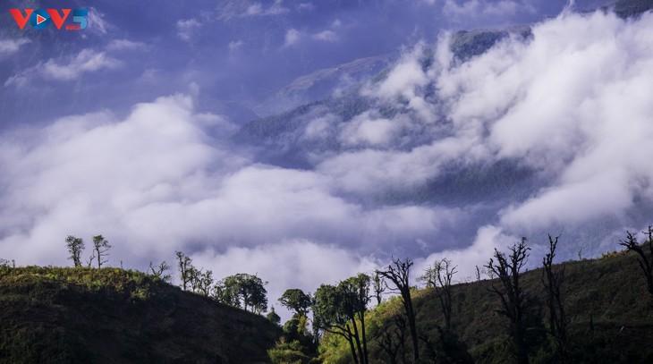 Lảo Thẩn, ngọn núi mang vẻ đẹp lãng du - ảnh 16