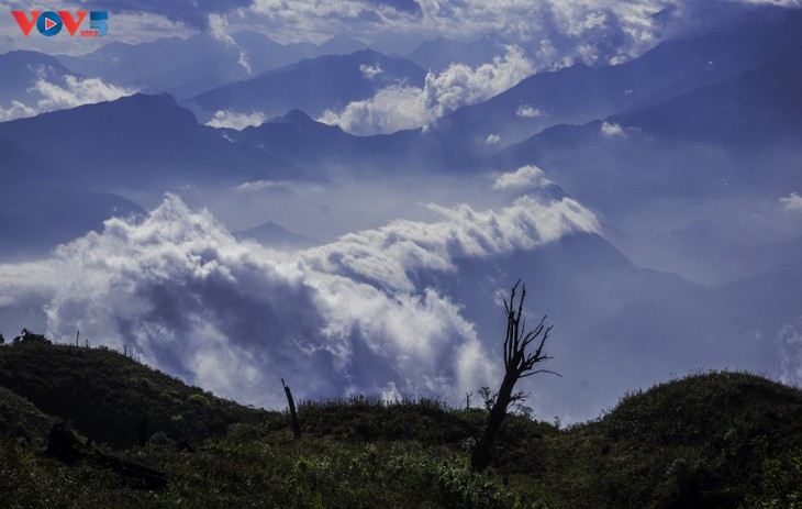 Lảo Thẩn, ngọn núi mang vẻ đẹp lãng du - ảnh 21