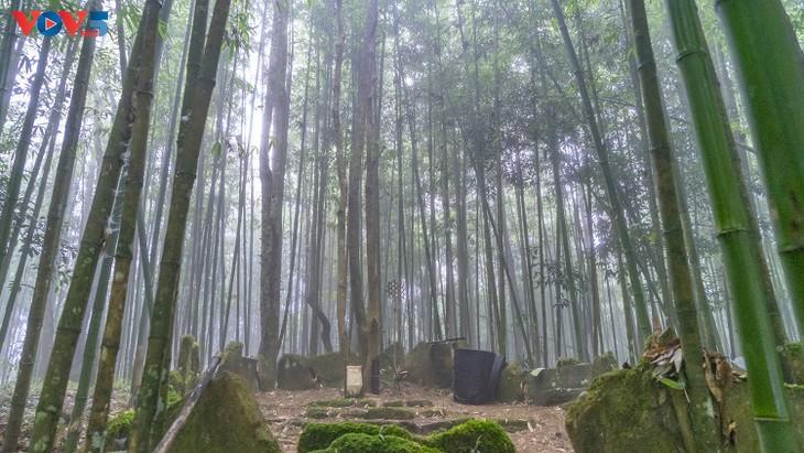 """Độc đáo lễ cúng rừng """" Gạ Ma Do"""" của người Hà Nhì đen - ảnh 1"""