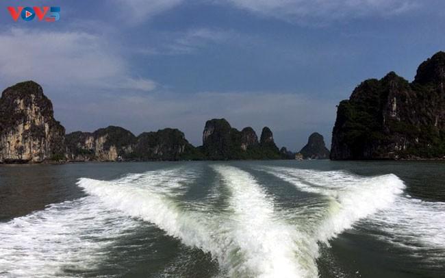 Việt Nam -  thị trường đầy tiềm năng trong lĩnh vực du thuyền - ảnh 3