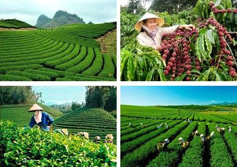 Meningkatkan Hasil Guna Pengelolaan Dan Penggunaan Tanah Di Semua