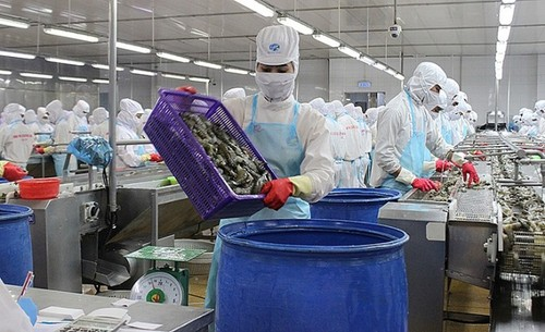 Vietnam's seafood exports to grow  - ảnh 2