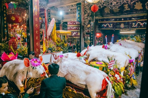 La Phu village preserves communal house, pig procession festival  - ảnh 5