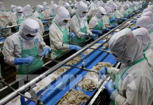 Vietnam targets 10 billion USD from seafood exports in 2019 - ảnh 1