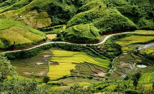 Daerah dataran tinggi Sin Ho: Keindahan yang masih liar di