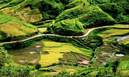 Sin Suoi Ho village, Ta Leng pine forest features magnificent scenery, ethnic culture - ảnh 1