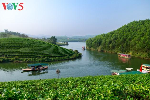Tee-Insel Thanh Chuong zieht zum Tet-fest Touristen an