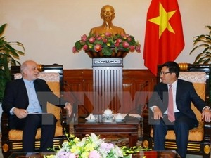 Vietnam, Iran to enhance friendship and multifaceted cooperation   - ảnh 1