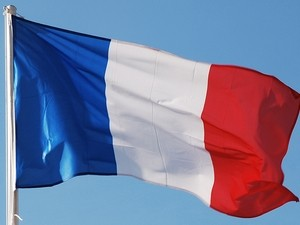 Kota Ho Chi Minh memperingati Hari Nasional Perancis. - ảnh 1