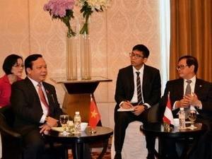Wakil Ketua MN Vietnam, Huynh Ngoc Son  melakukan kunjungan resmi di Indonesia - ảnh 1