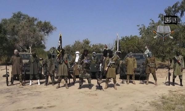 Serangan bom bunuh diri  di Kamerun - ảnh 1