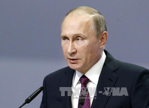 Presiden Rusia, Vladimir Putin:  Perekonomian  Rusia stabil - ảnh 1
