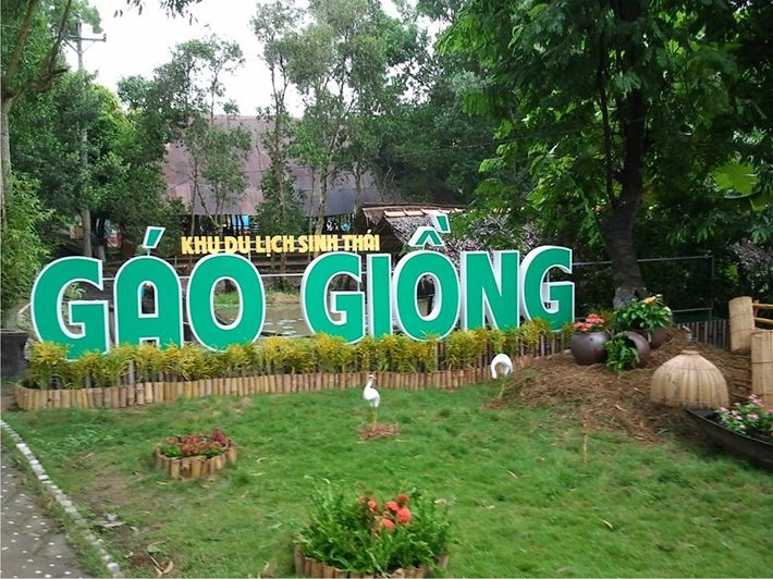 Gao Giong- zona ekowisata  yang menarik di kawasan Dong Thap Muoi - ảnh 1